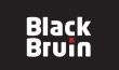 BlackBruin Motors